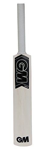 General Motors GM Mini Autograph Cricket Bat 17 inches (Not Meant for Playing) by General Motors