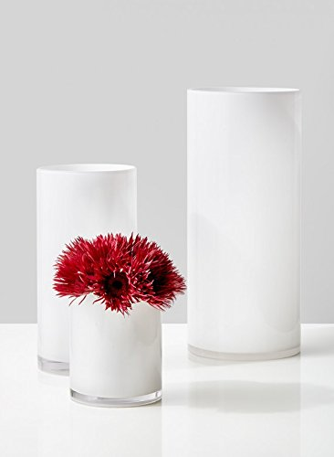 Amazon Serene Spaces Living White Glass Cylinder Vase Smart