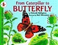 1996 Caterpillar - 7