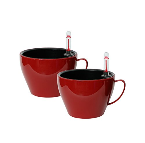 algreen-modena-cappuccino-cup-2-pack-55-diameter-by-4-gloss-red