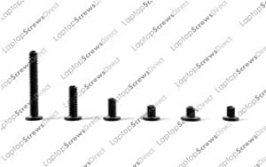 LaptopScrewsDirect - Juego de tornillos para portátil (58 unidades)