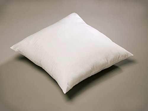 Bestemart 20x20 square pillow insert (1 Pack) Made in USA