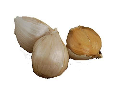 1 +Pound Fresh Elephant Garlic - Large - Soft-neck Cloves (Allium Sativum Var. Sativum) ()