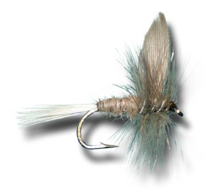 Blue Dun Fly Fishing Fly - Size 12 - 3 Pack (Dun Dry Fly Blue)