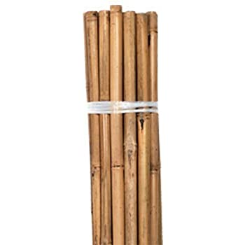 Bamboo Stakes, Natural, 3 foot, Bag of 25