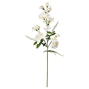 IKEA.. 504.097.46 Smycka Artificial Flower, Sweet Pea, White 8