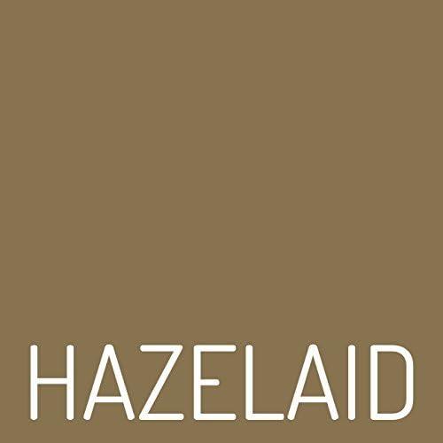 16 Baltic Amber Lemondrop Necklace Twist Clasp TM Hazelaid
