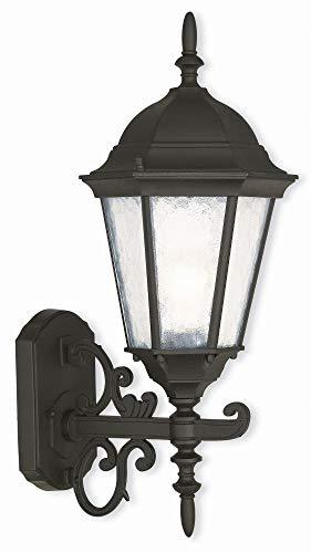 Hamilton 20 Light - Livex Lighting 75463-14 Hamilton - 20