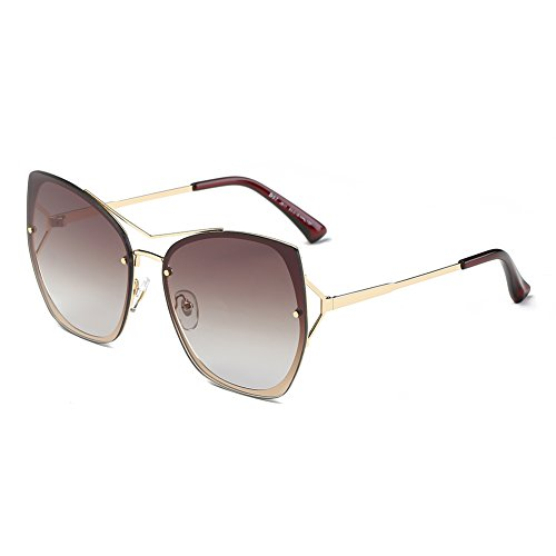 DONNA Trendy Oversized Mirrored Sunglasses Flat Flash Lens Square Cat Eye Shades - Driving Sun Best For Sunglasses Into