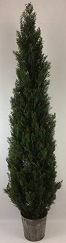 (Outdoor Artificial UV Rated 7 ft Cedar Topiary Tree with Lg Frosted Pot)