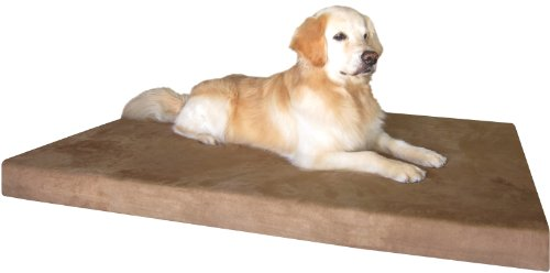 Dogbed4less Waterproof Liner Orthopedic Memory Foam Dog Bed with Washable Brown Microsuede Cover and External Case, 55-Inch x 37-Inch x 4-Inch (XX-Large)