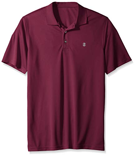(IZOD Men's Big and Tall Golf Grid Short Sleeve Polo, Purple Potion, Large Tall)