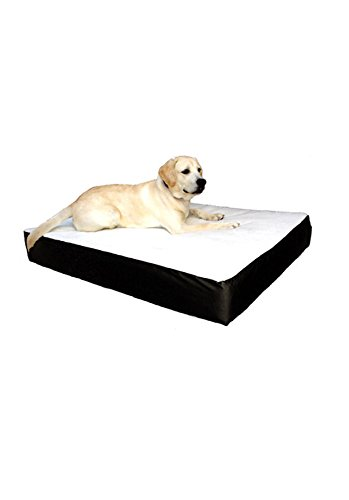 34x48 Black Orthopedic Double Pet Dog Bed By Majestic Pet Products  Large Cushion to Extra Large With Removable Washable Cover by Majestic Pet