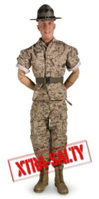 Xtra Salty R. Lee Ermey Military 12 inch figure by Sideshow Toy (12 Inch Figure Sideshow Toy)