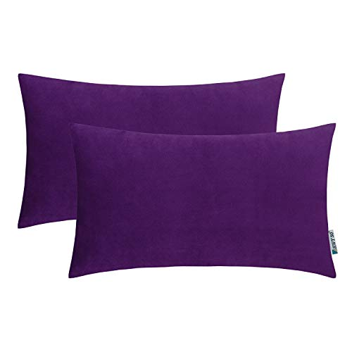 HWY 50 Velvet Soft Soild Decorative Throw Pillows Covers Set Cushion Cases for Couch Sofa Living Room Rectangular 12 x 20 inch Purple Pack of 2 -
