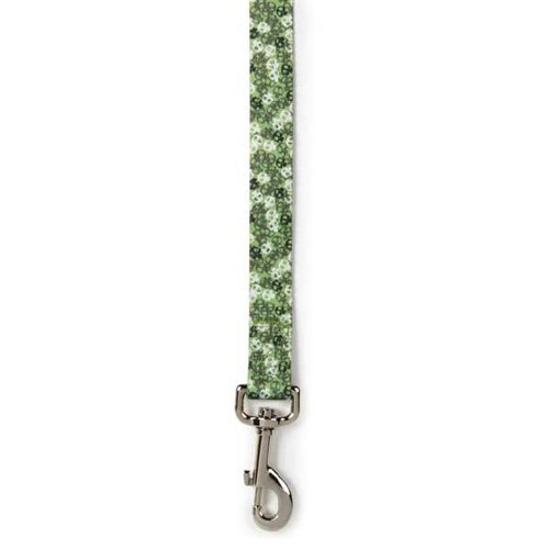 Casual Canine Bone Heads Dog Lead, 4-Feet, Green