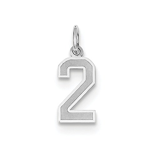 14k White Gold Laser-cut Small Satin Number 2 Charm - Measures 20x7.4mm