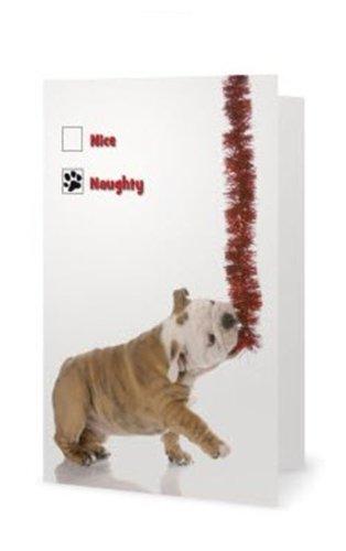 bulldog depot holiday collection naughty or nice box set of 10 bulldog - Office Depot Christmas Cards