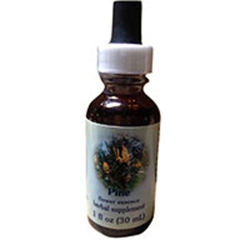 Flower Essence Healing Herbs Pine Dropper -- 1 fl oz