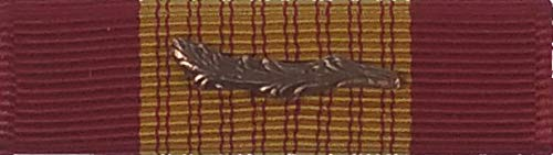 (US Army Medals Military Vietnam Gallantry Cross Medal Ribbon)