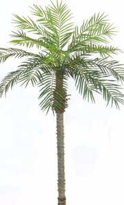 7 Foot Artificial Phoenix Palm Tree Plant Palm