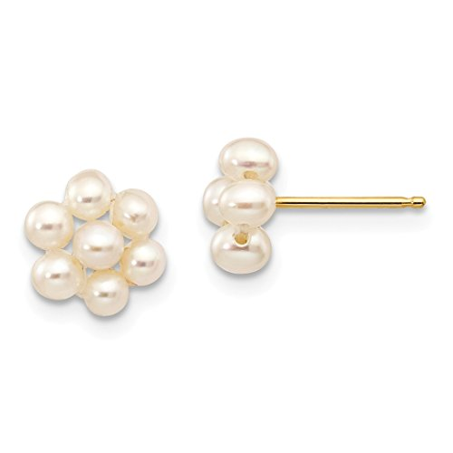 14k Yellow Gold 3mm White Egg Freshwater Cultured Pearl Flower Post Stud Ball Button Earrings Gardening Fine Jewelry For Women Gift Set