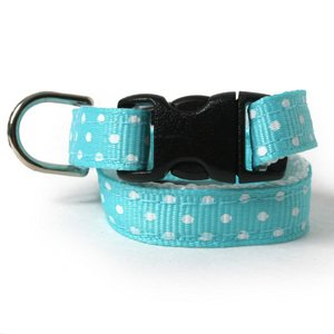 Aqua Dots Dog Collar-- made in New England