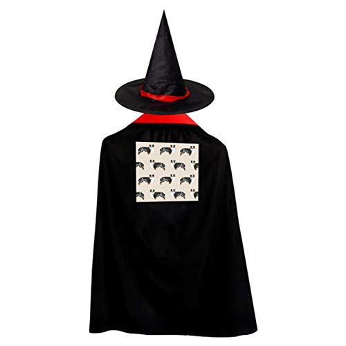 Halloween Costumes Witch Wizard Australian Shepherd Cloak with Hat Kids Cape Child's Party Cosplay Props Set Boys Girls ()