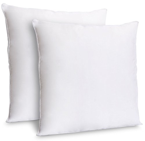 ZOYER Decorative Throw Pillow Inserts (2 Pack, White) - Square Indoor Sofa Pillows - Premium Poly Cotton Cover (16x16 Inch)