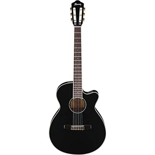 Ibanez AEG10NII Nylon String Cutaway Acoustic-Electric Guitar Level 2 Black 888365379807 (Ibanez Nylon Cutaway Guitar)