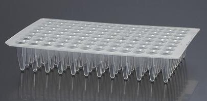 EarthOx PCR Plate 96 Well - No-Skirt (10 Plates) by EarthOx