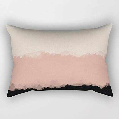 - FJPT Recangular Throw Pillow Cover Abstract Rose Color Flora Blush and Black White Creative Decorations for Sofa Bed Cotton Square Stand Size Pillowcase 12x20 Inch