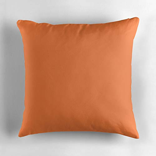 (Kidmekflfr Mango Tango Decorative Throw Pillow Cover Cushion Two Sides Printed Pillow Case Square Print for Home Car Decor 18x18 Inch)