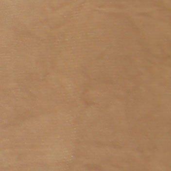 Berkshire Women's Plus-Size In Control Silky Sheer Shaper Pantyhose - 4814