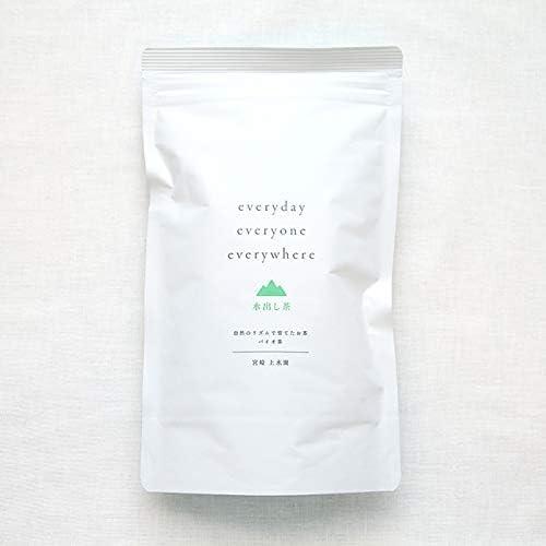 上水園「everyday 水出し茶 S」 45g(3g×15パック) 一番茶 宮崎県 無農薬 無肥料 バイオ茶