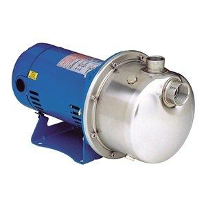 Goulds Pumps Centrifugal Pump - 8