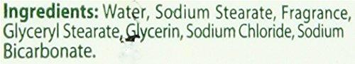 Review Citrus Magic Pet Odor Absorbing Solid Air Freshener Fresh Citrus, 8-Ounce