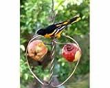 Cheap Songbird Essentials SEHHAPPL Johnny Apple Feeder (Set of 1)