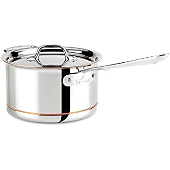 Amazon Com All Clad 4204 With Loop Stainless Steel Tri