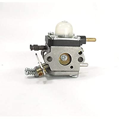 Flymotorparts Carburetor for 2 Cycle Mantis 7222 7222E 7222M 7225 7230 7234 7240 7920 7924 Tiller Cultivator Echo : Sports & Outdoors