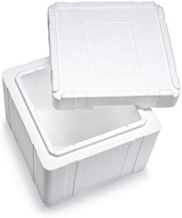 Premium poliestireno Caja/aislante Caja – 290 X 290 X 224 mm (18 ...