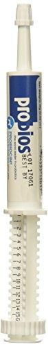 Probiocin Oral Gel 15gm syringe