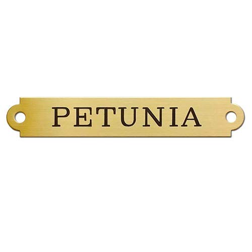"""HALTER PLATE XLARGE THICK Notched Brass or Nickel Silver I.D. Plate .050"""" Thick Custom Engraved"""