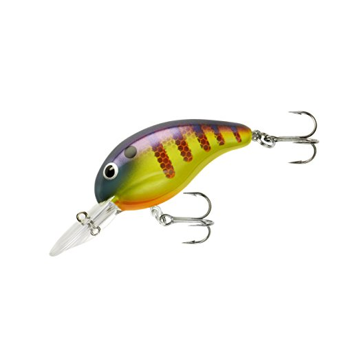 Bandit Series 200 Tackle, Viral Perch, 2
