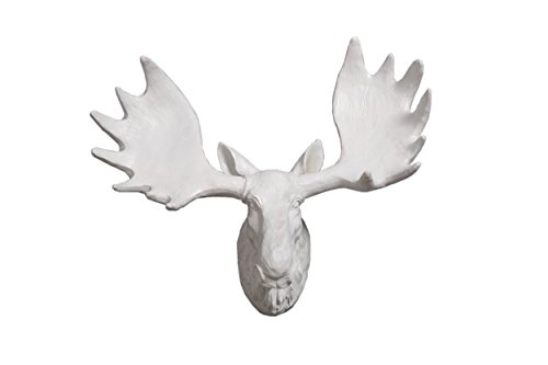 Moose Horn - 1
