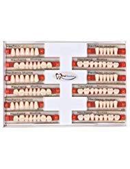 84 Pcs Dental Complete Acrylic Resin Denture False Teeth 3 Sets Synthetic Polymer Resin Denture Teeth 23 A2 Upper + Lower Dental Materials