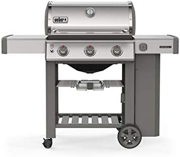 Weber Stephen Company 61001001 Stainless
