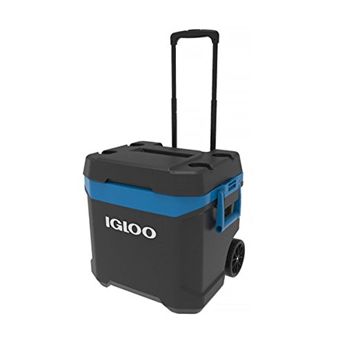 igloo (Igloo) Max Call Cooler Box 62 QT / 58 L Maximum Cold Storage 5 Days, Clear