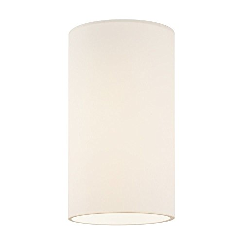 Frosted White Glass Shade 1-5/8-Inch Fitter