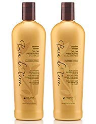 (Bain de Terre Passion Flower Color Preserving Shampoo and Conditioner Set 13.5)